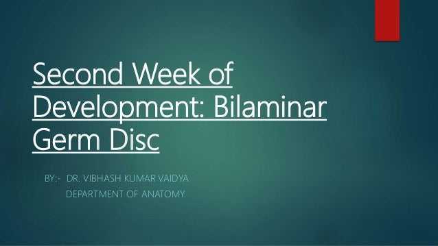 Second Week of Development: Bilaminar Germ Disc BY:- DR. VIBHASH KUMAR VAIDYA DEPARTMENT OF ANATOMY