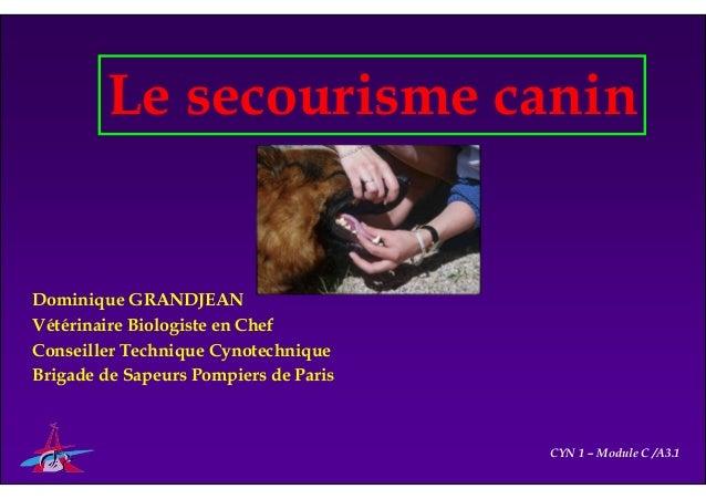 Le secourisme canin Dominique GRANDJEAN Vétérinaire Biologiste en Chef Conseiller Technique Cynotechnique Brigade de Sapeu...