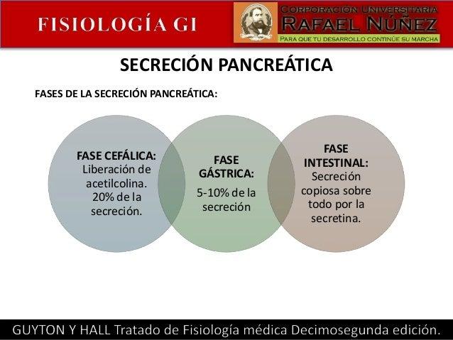 Secreción gastrointestinal