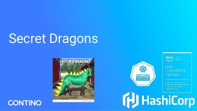 Secret Dragons Secret Dragons