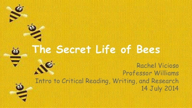 secret life of bees outline The book called the secret life of bees is a novel about women working and living together to promote the sense of unity and spirituality for women.