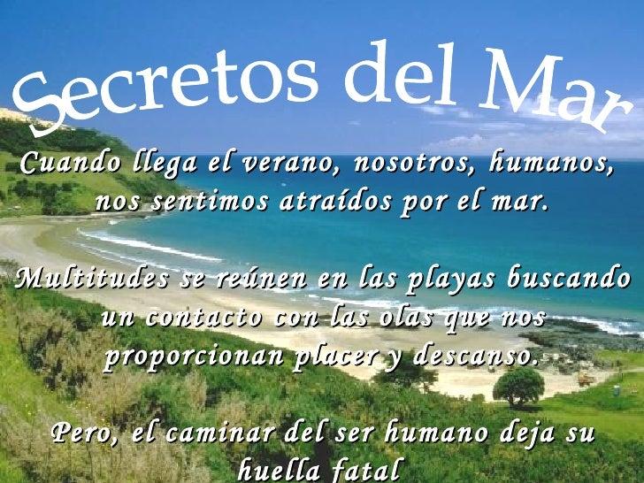 Secretos del Mar Cuando llega el verano, nosotros, humanos,  nos sentimos atraídos por elmar. Multitudes se reúnen en las...