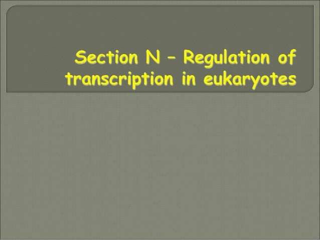 N1 Eukaryotic transcription factorsN1 Eukaryotic transcription factors Transcription factor domain structure, DNA- binding...