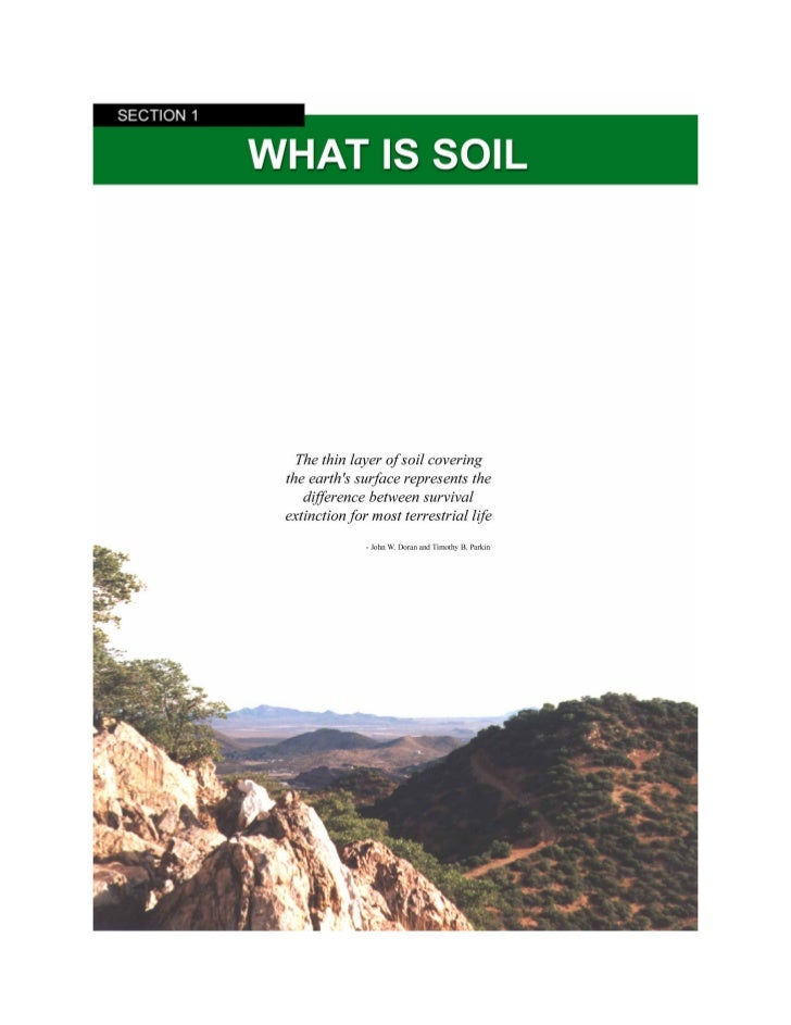 What is Soil?1