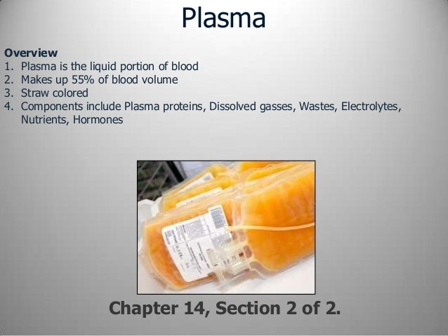 chapter 14 section 3 Study flashcards on chapter 14 section 3 at cramcom quickly memorize the terms, phrases and much more cramcom makes it easy to get the grade you want.