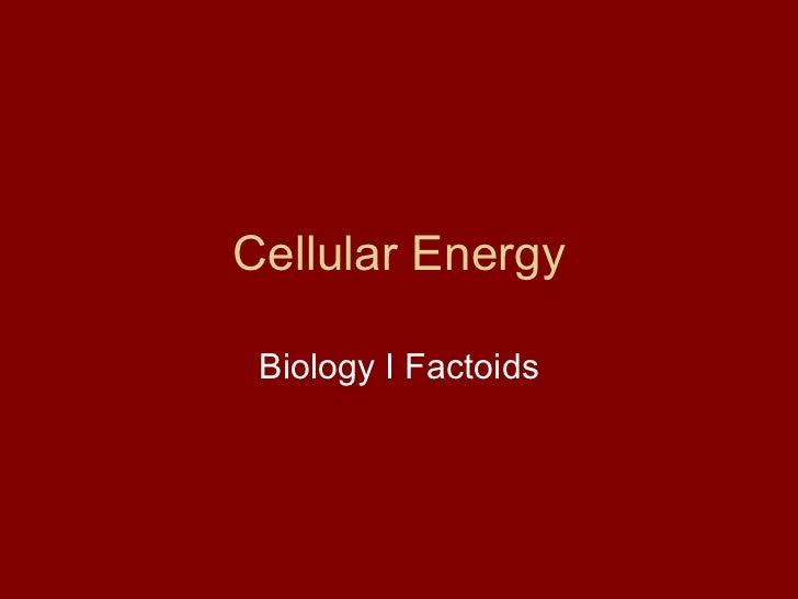 Cellular Energy Biology I Factoids