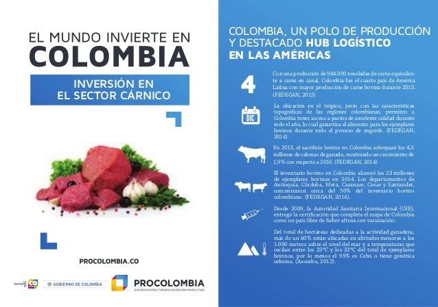 COLOMBIA, UN POLO DE PRODUCCIÓN Y DESTACADO HUB LOGÍSTICO EN LAS AMÉRICAS La ubicación en el trópico, junto con las caract...
