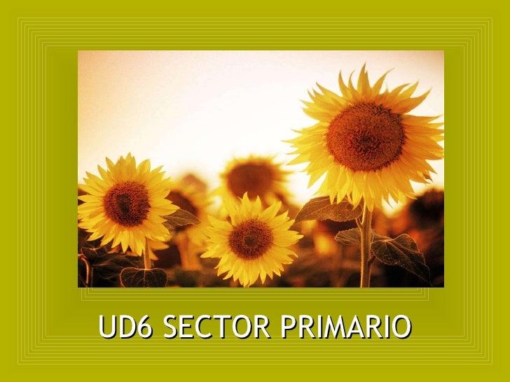 UD6 SECTOR PRIMARIO