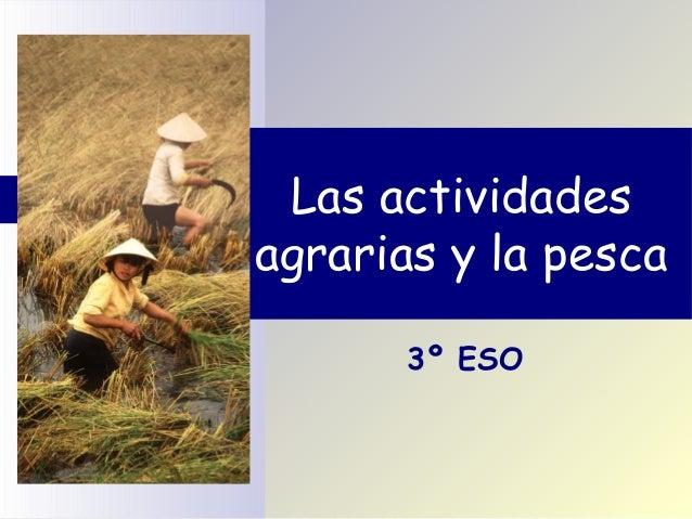 Las actividadesagrarias y la pesca       3º ESO