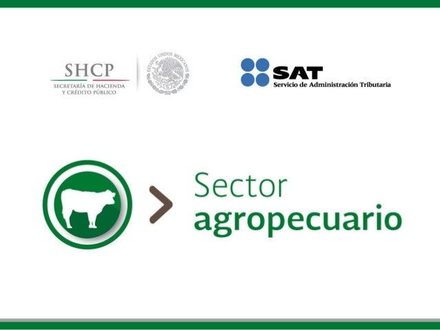 Devolución de IVA para el sector agropecuario