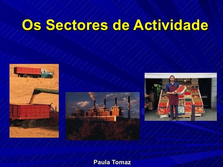 Os Sectores de Actividade Paula Tomaz
