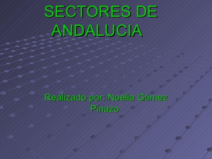 SECTORES DE ANDALUCIA  Realizado por: Noelia Gómez Pinazo