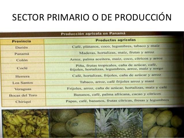 SECTOR PRIMARIO O DE PRODUCCIÓN  M.sc Roberto A. Marín