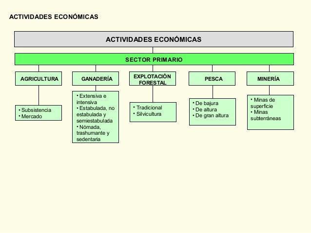 ACTIVIDADES ECONÓMICAS • Subsistencia • Mercado • De bajura • De altura • De gran altura • Extensiva e intensiva • Estabul...