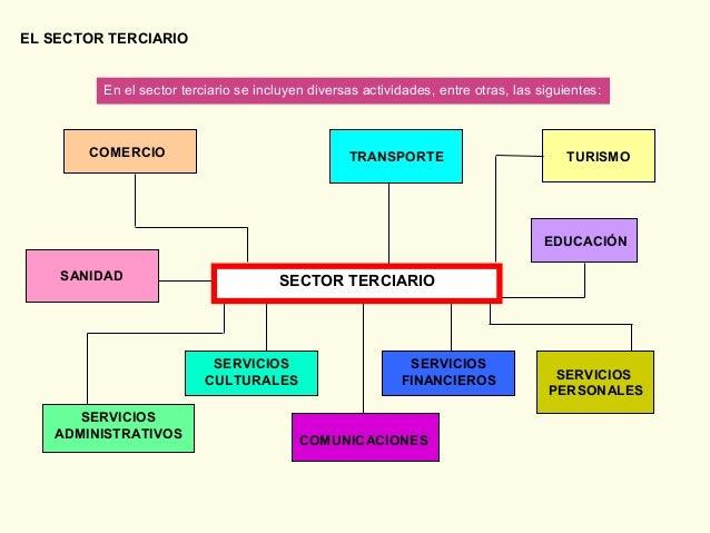 EL SECTOR TERCIARIO En el sector terciario se incluyen diversas actividades, entre otras, las siguientes: SERVICIOS ADMINI...
