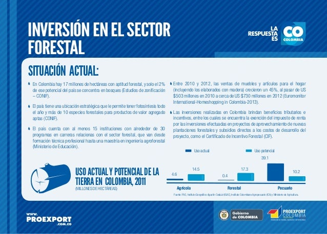 INVERSIÓN EN EL SECTOR FORESTAL SITUACIÓN ACTUAL: En Colombia hay 17 millones de hectáreas con aptitud forestal, y solo el...