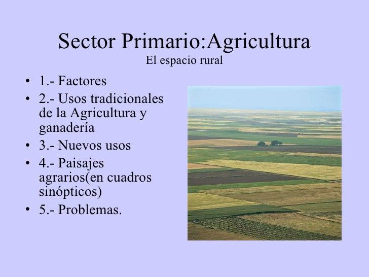 Sector Primario:Agricultura El espacio rural <ul><li>1.- Factores </li></ul><ul><li>2.- Usos tradicionales de la Agricultu...
