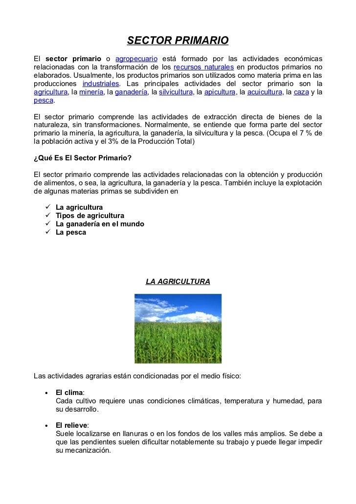 SECTOR PRIMARIOEl sector primario o agropecuario está formado por las actividades económicasrelacionadas con la transforma...