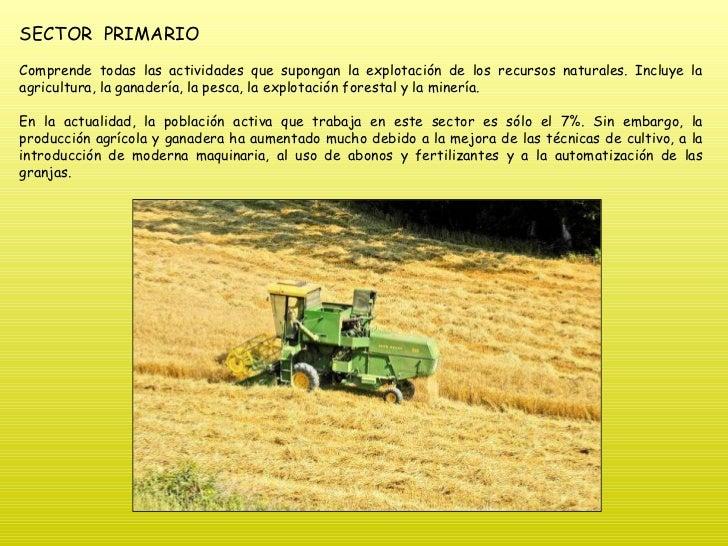SECTOR  PRIMARIO Comprende todas las actividades que supongan la explotación de los recursos naturales. Incluye la agricul...