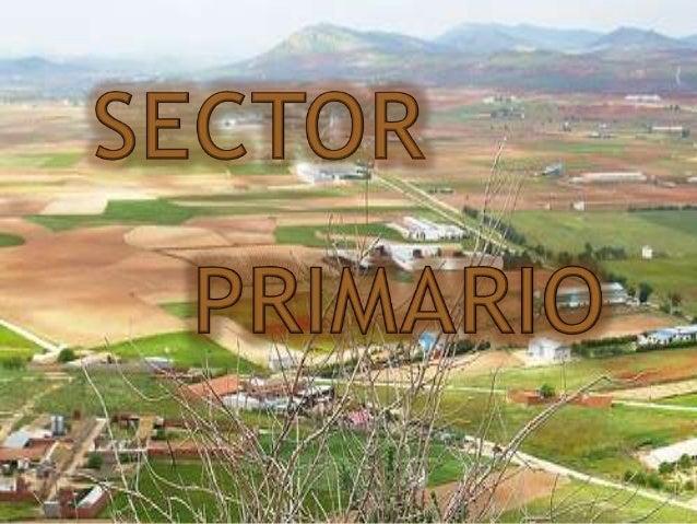 1.-Definición sector primario. 2.-Actividades del sector primario. 3.-Sector primario en el mundo desarrollado y subdesarr...