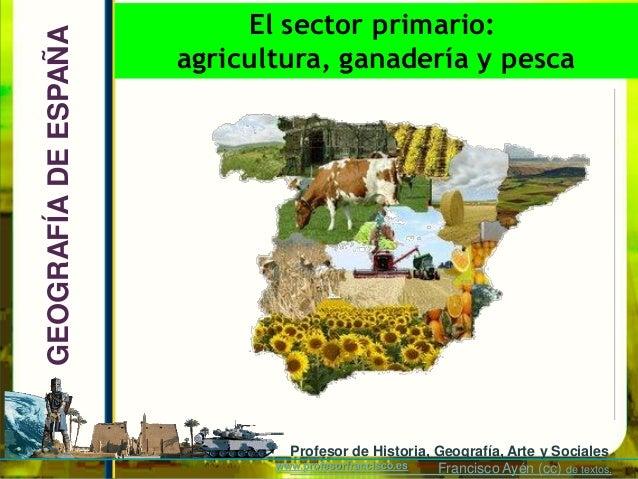 El sector primario:GEOGRAFÍA DE ESPAÑA   agricultura, ganadería y pesca                               Profesor de Historia...