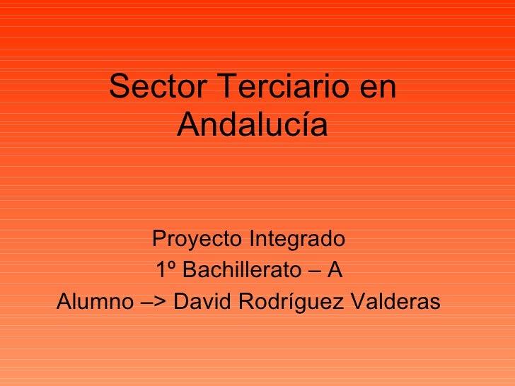 Sector Terciario en Andalucía Proyecto Integrado 1º Bachillerato – A Alumno –> David Rodríguez Valderas