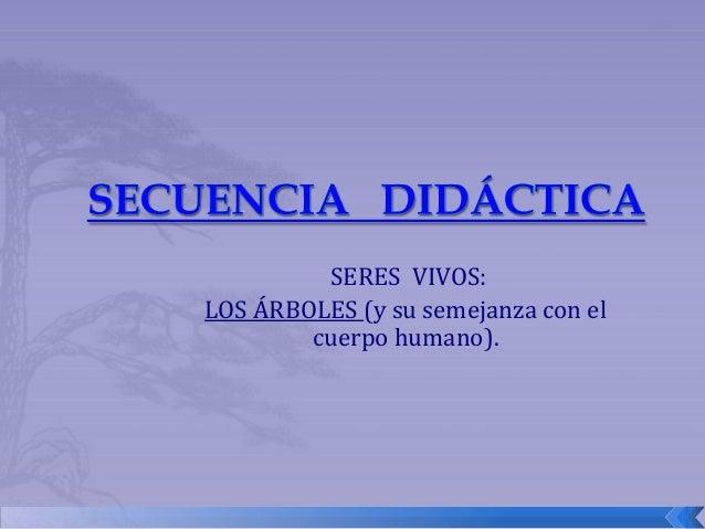 SERES VIVOS: LOS ÁRBOLES (y su semejanza con el cuerpo humano).
