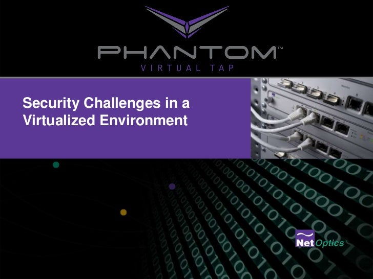 Security Challenges in a Virtualized Environment