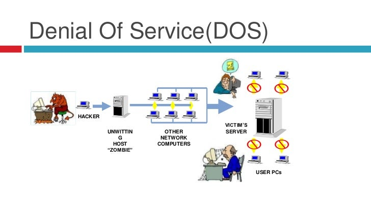 denial of servicedos essay Denial of service attack, bot and botnet essaystechnology gets sophisticated as the years go by and by the same token, man's knowledge about the use and exploitation of technology increases.