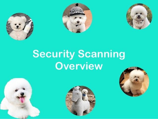 Security Scanning Overview - Tetiana Chupryna (RUS) | Ruby Meditation 26