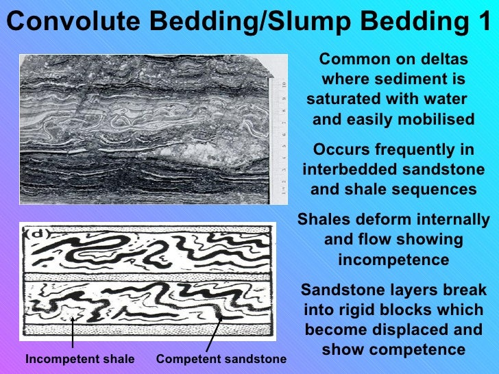 Sedimentary Structures Smallas