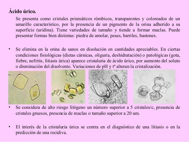 alimentos permitidos pacientes con gota el mango es danino para el acido urico valores normales acido urico mujeres