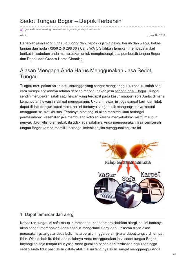 admin June 29, 2018 Sedot Tungau Bogor – Depok Terbersih gradeshomecleaning.com/sedot-tungau-bogor-depok-terbersih/ Dapatk...