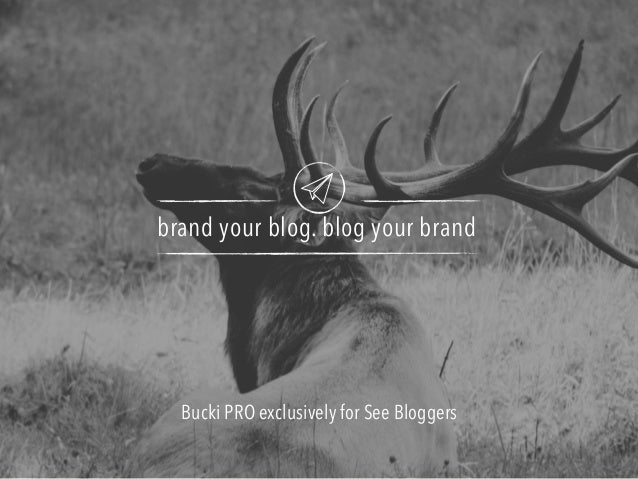 brand your blog. blog your brand Bucki PRO exclusively for See Bloggers