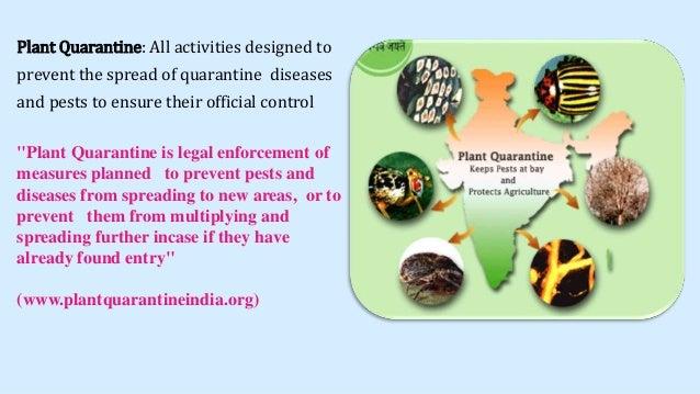 Advantages and disadvantages of biological pest control
