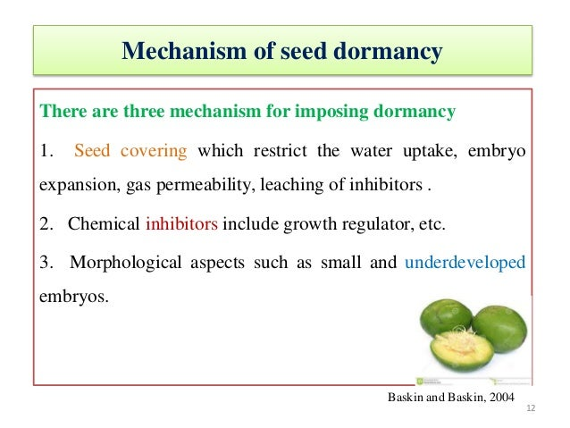 effect of moisture contents and storage temperature citrus seeds biology essay Since the different morphs in seed (and fruit)  readily under a favourable moisture and temperature  during dry storage the seeds of certain.