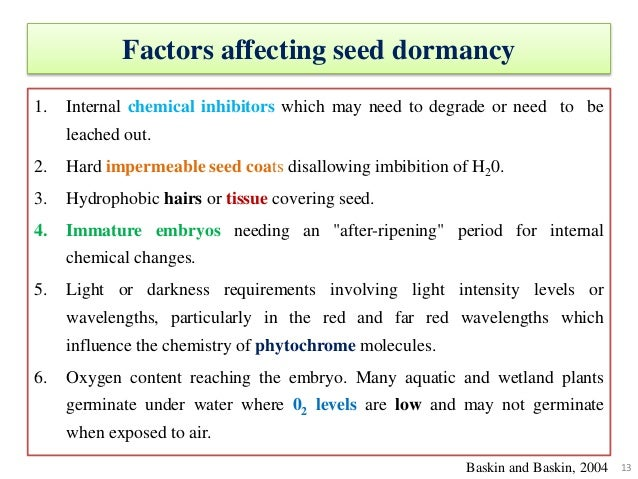 "seed dormancy Dormancy occurs in seeds with ""hard"" seed coats that become suberized and impervious to water macrosclereid cells of the outer integument become rearranged, coalesce, incorporate suberin deposits, and develop external cutin coverings (rolston 1978."