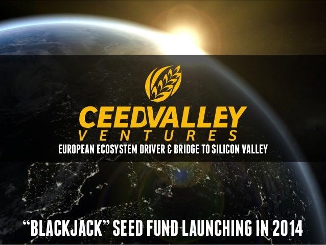 The Case for Seeding Europe - Keynote #FundraiseIT 2014 #Belgrade @ceedvc Slide 3