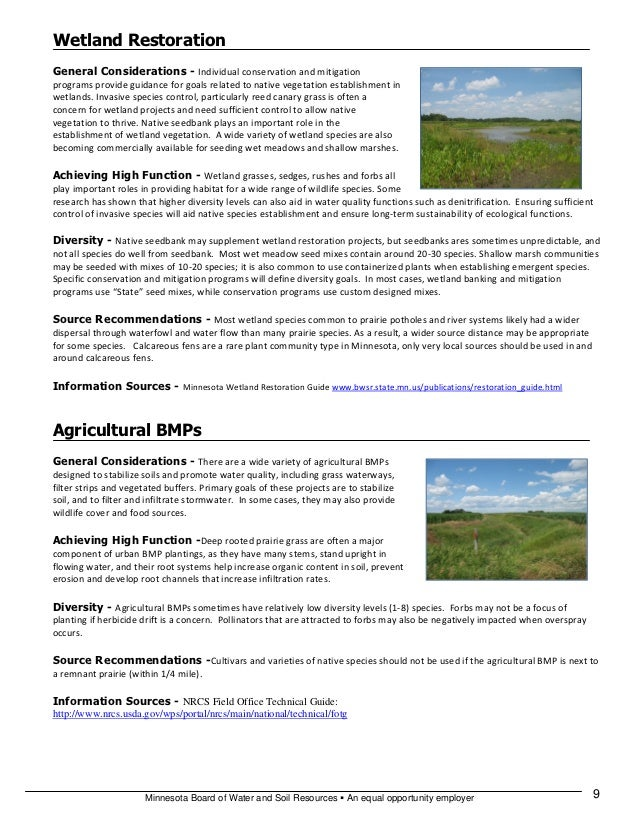 pakistan wetland program Pakistan - national drainage program project - progress report on implementation of management's action plan in response to the inspection.