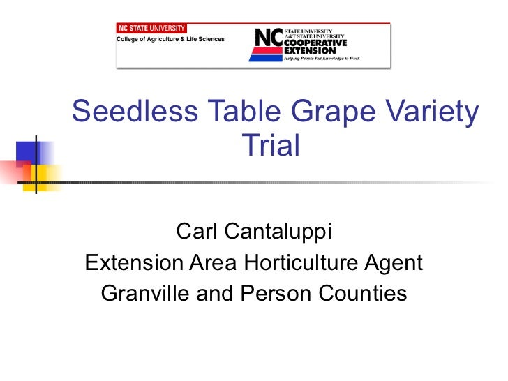 Seedless Table Grape Variety Trial Carl Cantaluppi Extension Area Horticulture Agent Granville and Person Counties