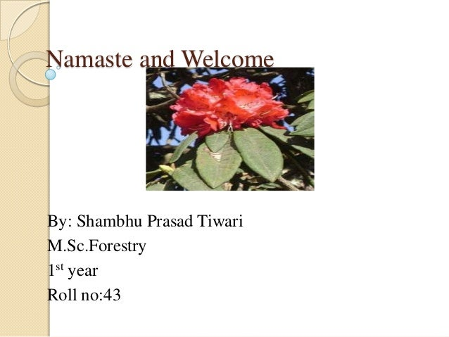 Namaste and Welcome  By: Shambhu Prasad Tiwari M.Sc.Forestry 1st year Roll no:43