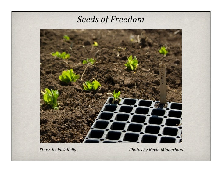 Seeds