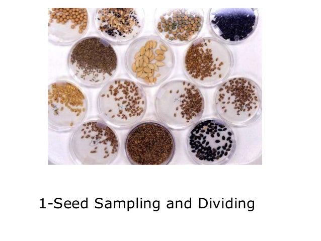 Seed sampling