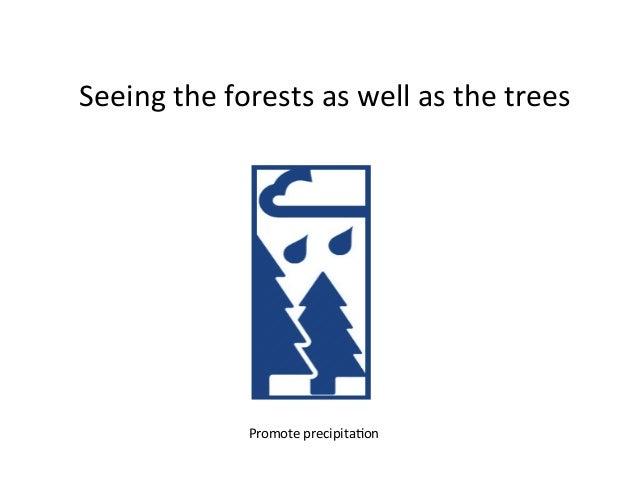 Seeingtheforestsaswellasthetrees DanielMurdiyarsoPromoteprecipita9on