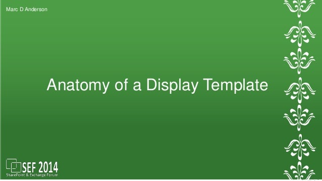 Marc D Anderson  Anatomy of a Display Template