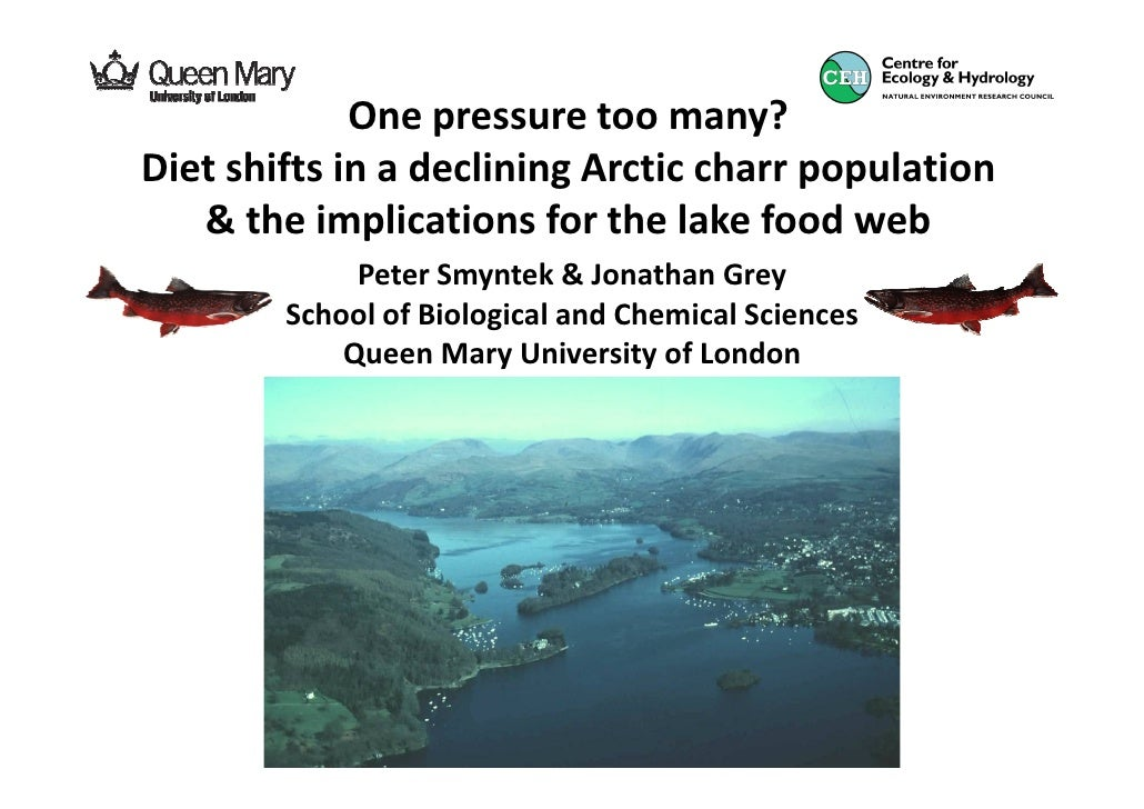 One pressure too many?Diet shifts in a declining Arctic charr population   & the implications for the lake food web       ...