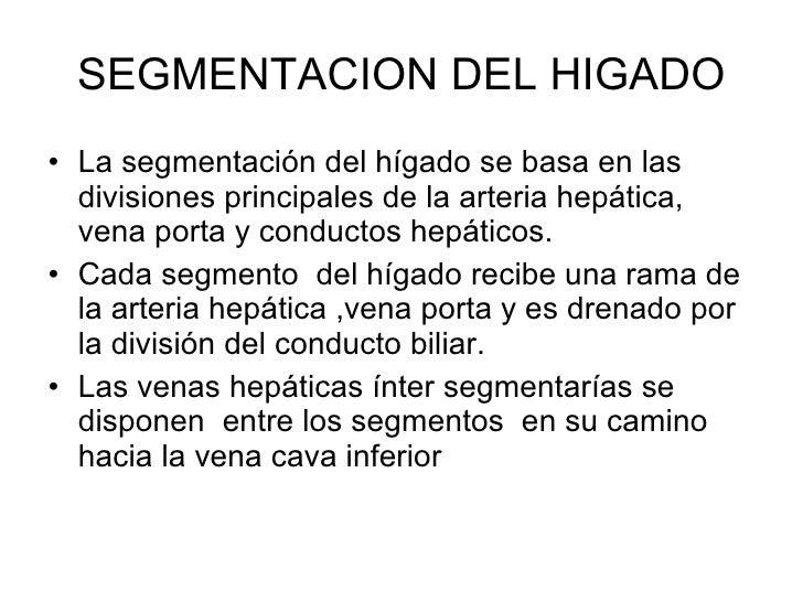 SEGMENTACION DEL HIGADO <ul><li>La segmentación del hígado se basa en las divisiones principales de la arteria hepática, v...