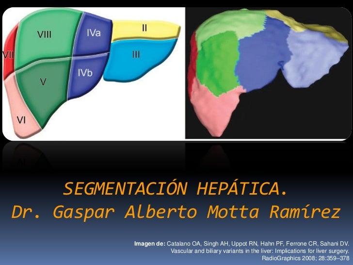 SEGMENTACIÓN HEPÁTICA.Dr. Gaspar Alberto Motta Ramírez           Imagen de: Catalano OA, Singh AH, Uppot RN, Hahn PF, Ferr...