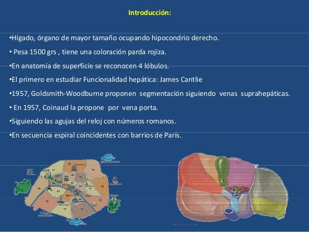 Segmentacion hepatica ecografia
