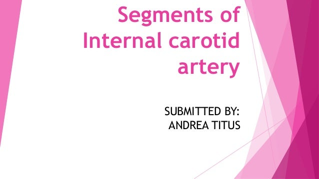 Segments of Internal carotid artery SUBMITTED BY: ANDREA TITUS
